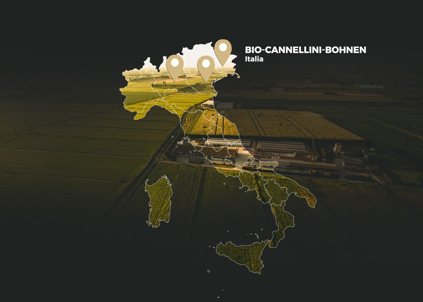 Bio-Cannellini-Bohnen